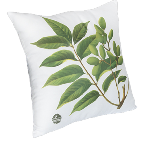 Cushion Cover - 40cm with inner